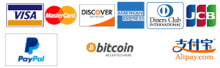 Eurail Roaming payment method Visa, Amex, Diners, Mastercard, Apple Pay, Alypay, Paypal, bitcoin